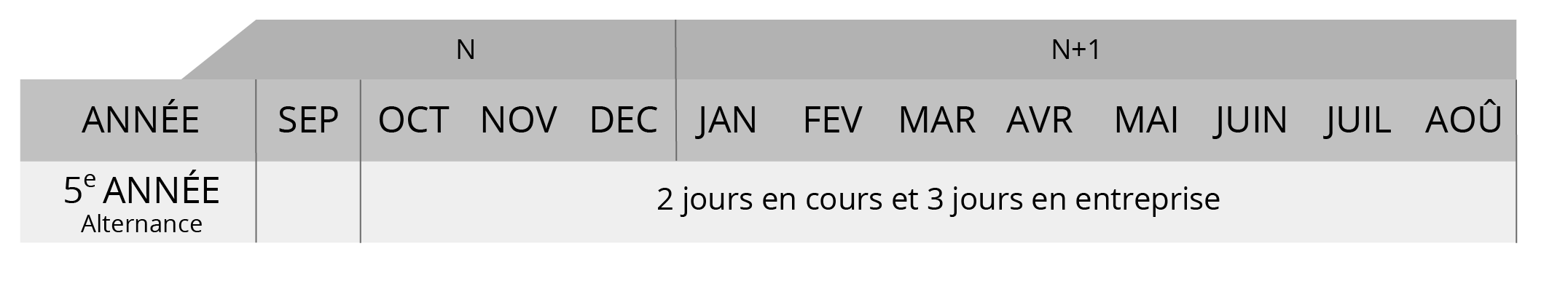 MAM5_tableau_periode_cours_stage_alternance-07